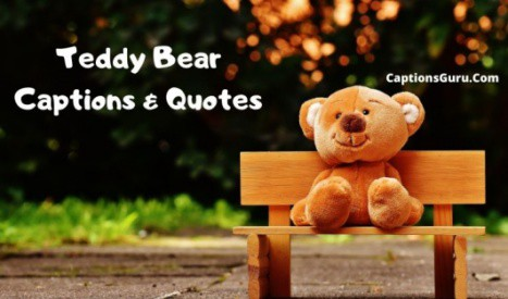 Teddy Bear Captions & Quotes