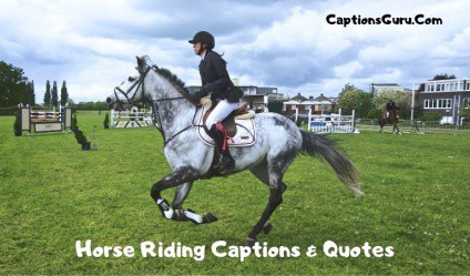 Horse Riding Captions & Quotes